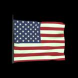 United States antenna icon
