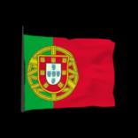 Portugal antenna icon
