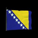 Bosnia and Herzegovina antenna icon