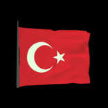 Turkey antenna icon