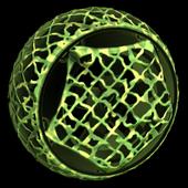 Camo Inverted wheel icon