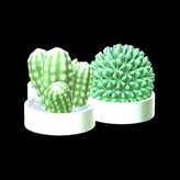 Succulents topper icon