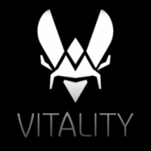 Team Vitality decal icon