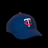 Minnesota Twins topper icon