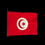 Tunisia antenna icon