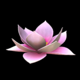 Flower - Lotus topper icon