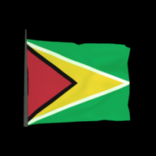 Guyana antenna icon