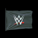 WWE antenna icon