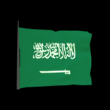 Saudi Arabia antenna icon