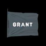 Grant antenna icon