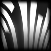 Streamline decal icon