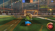 Rl packet loss preview