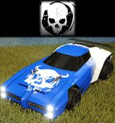 Skulls decal premium