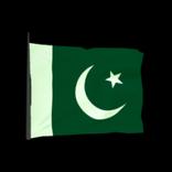 Pakistan antenna icon
