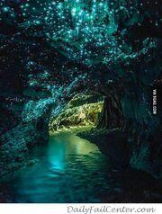 RW Waitomo Cave