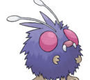 Venonat