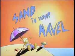 Sand In Your NavelHQ