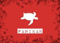 PawikanTribeFlag