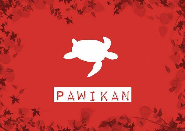 File:PawikanTribeFlag.jpg