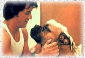 Rocky and Butkus