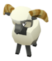Baby World's Tallest Sheep