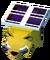 Baby Solar Bear