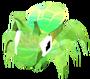 Baby Glasshopper