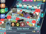 Species: Spider