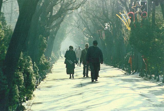 Bestand:Cismigiu Winter Promenade.jpg