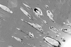 RC Cells