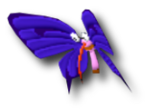 Insector desert flapper