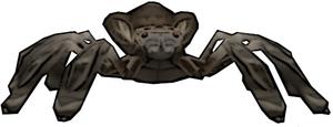 025 Tarantula