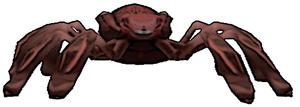 019 Red Spider