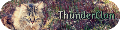 File:Thunn.png