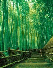 Sagano-Bamboo-Grove-...