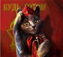 Кот пионер