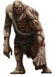Flesh Golem