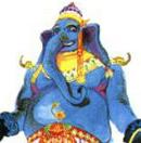 RS3 Elephant Portrait
