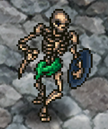 RS2 Skeleton
