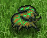 RS2 Sea Slug