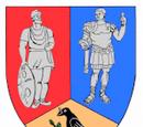 Județul Hunedoara