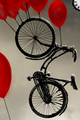 Bike Balloon.png
