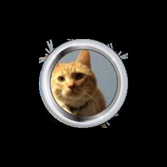 RT Podcast Badge