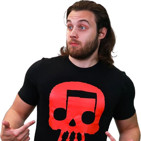 Skull wearing the Skull icon shirt