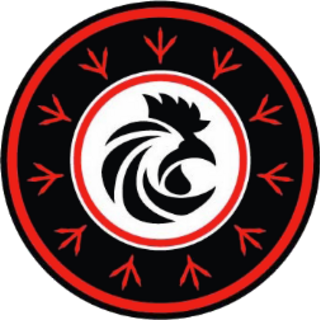 Rooster Corps Insiginia