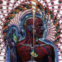 Lateralus (album)