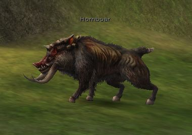 Hornboar