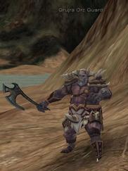 43 grujra orc guard