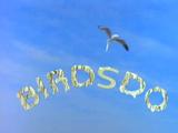 Birdsdo