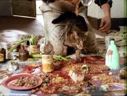 Spaghetti Pig Out-08
